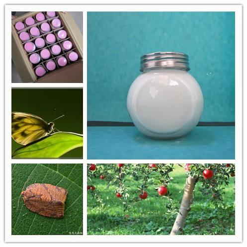 препарат для уничтожения насекомых дифлубензурон 25% рг 20% подкоёно контроль над масличных культур