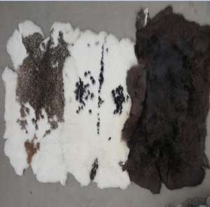 Good quality Rabbit fur skin and rabbit skins for clothing