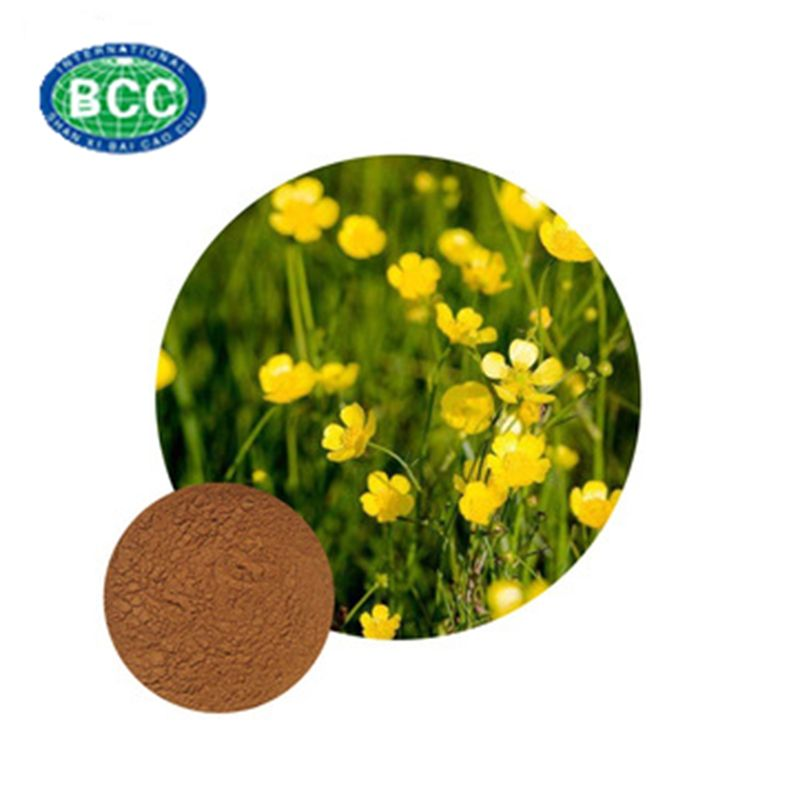 Catclaw Buttercup Root Tuber extract 3% - 15% Alkaloid