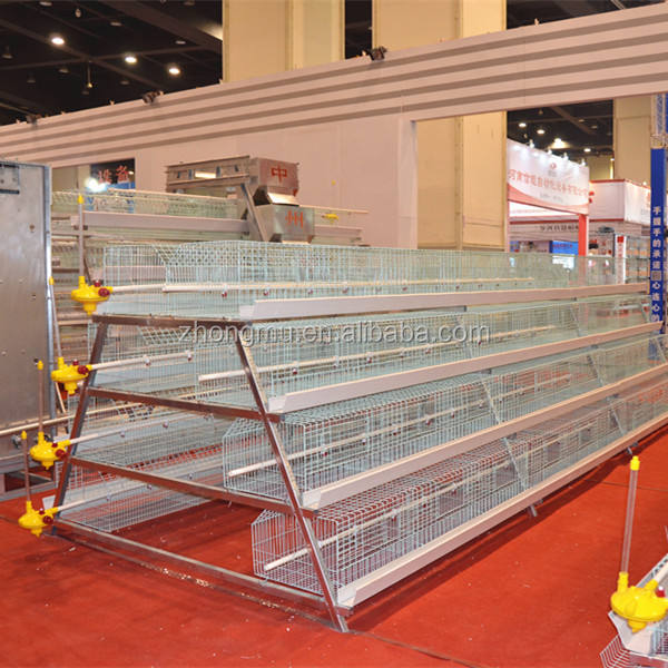egg chicken cage/Poultry Shed Cage for layer chicken farm/quail cages for chicken farm