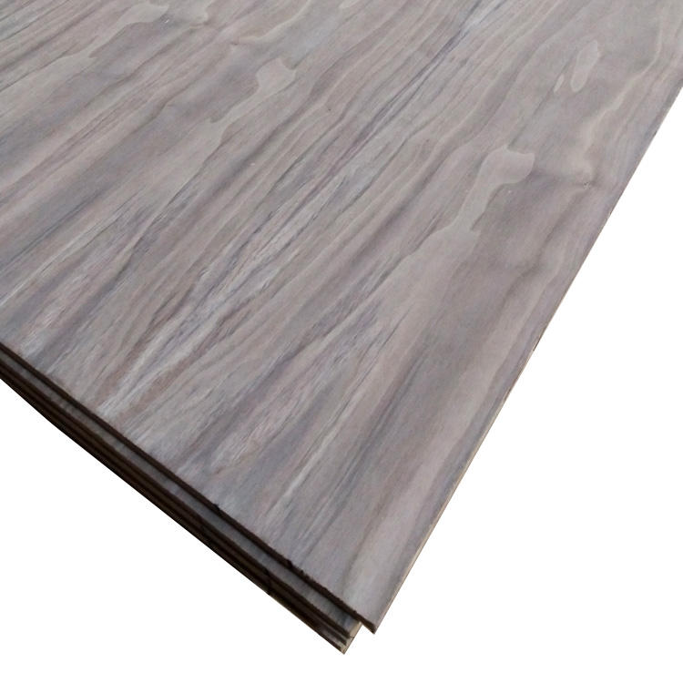18.0mm Best selling hot chinese products black walnut for furniture