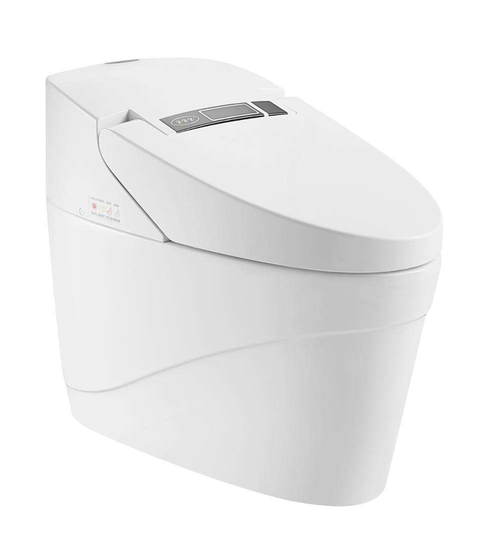 European Sanitary Ware Hot&Cold Water Cleaning Electric Intelligent Toilet ZJS-03