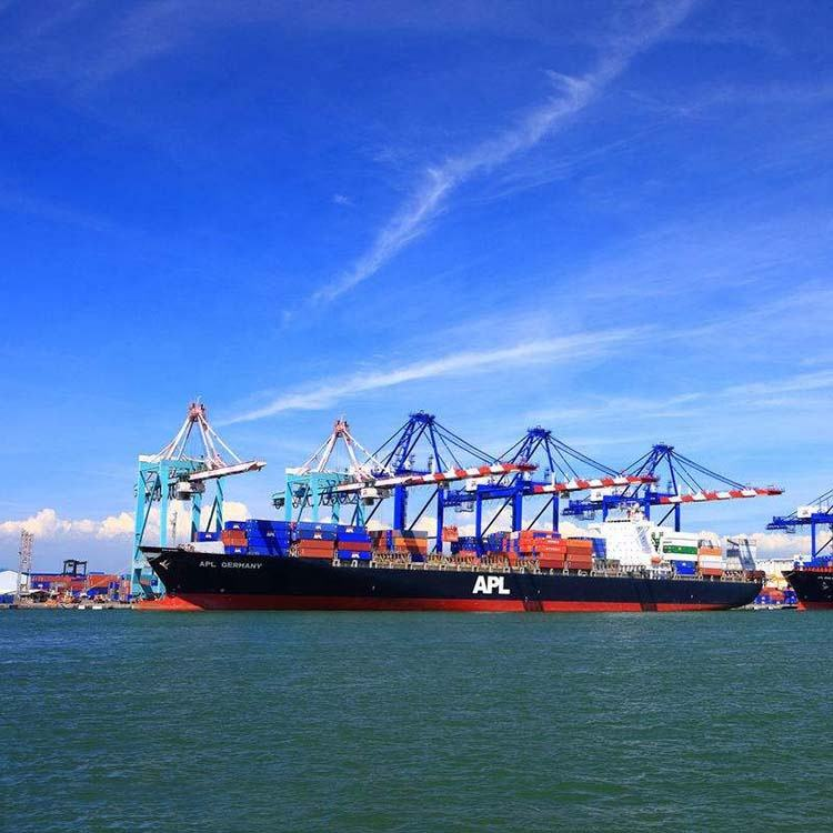 International Logistics Companies Sea Shipping Rates from China to USA Door to Door