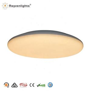 Custom Lamp Manufacturer Led Ceiling Light
