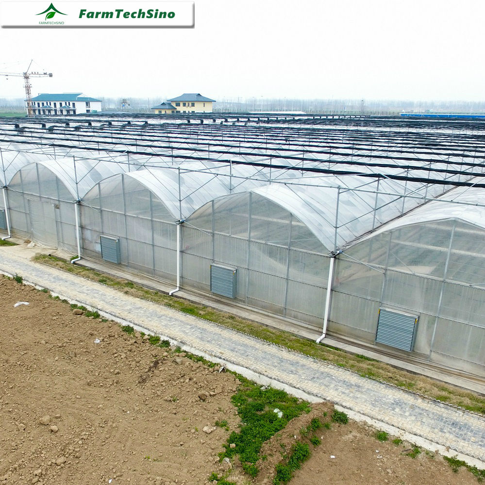 I Sell Farm Used Tropical Greenhouses for Tropic Area