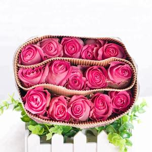 Stupendous China Red Roses Farm China Red Roses Farm Manufacturers And Funny Birthday Cards Online Inifodamsfinfo