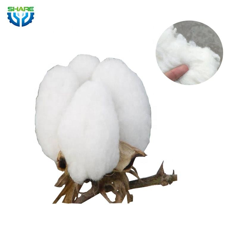 Buy 100% raw cotton 100% organic cotton