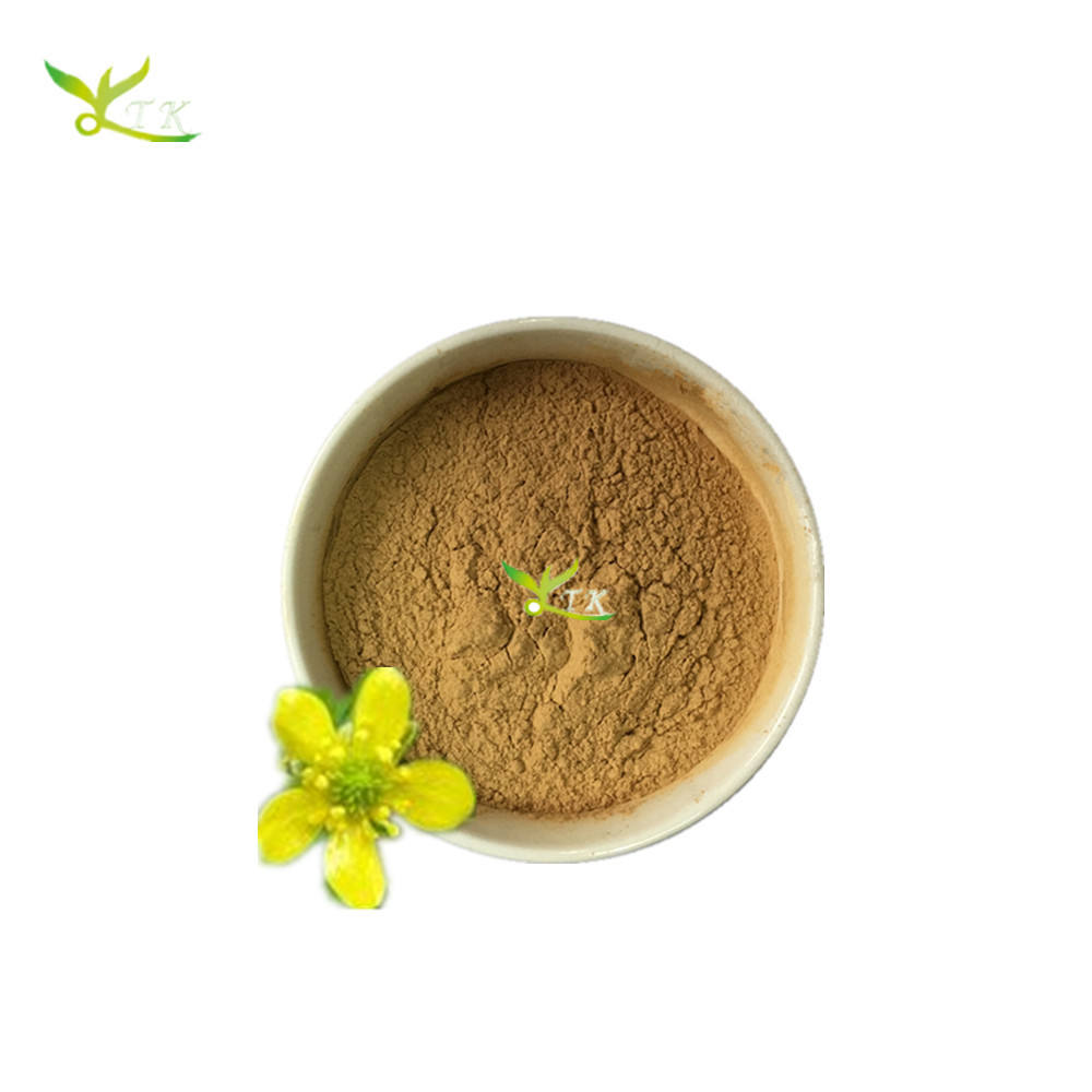 Chinese Herbal Extract Catclaw Buttercup Root Tuber Extract