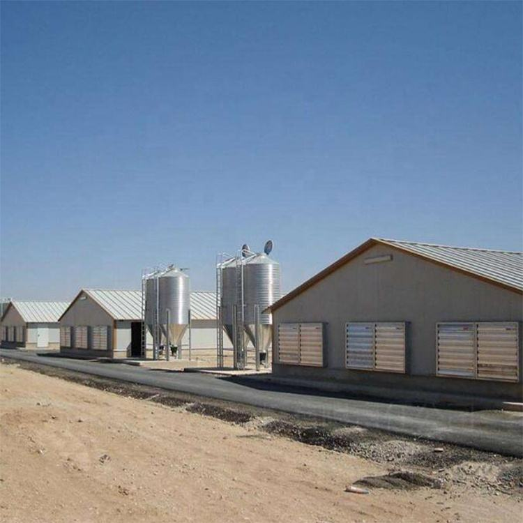 simple install poultry farm using prefabricated steel structure chicken house building