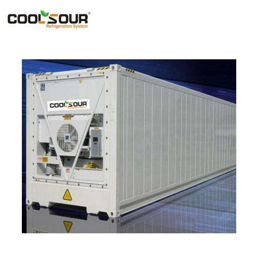 COOLSOUR Novo 20 FT Refrigerado/Reefer Recipiente De Transporte de Peixe