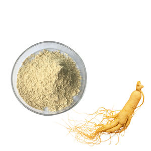 Chinese factory 100% Natural Panax korean Ginseng Root or Stem Leaf P.E ginseng extract ginseng powder