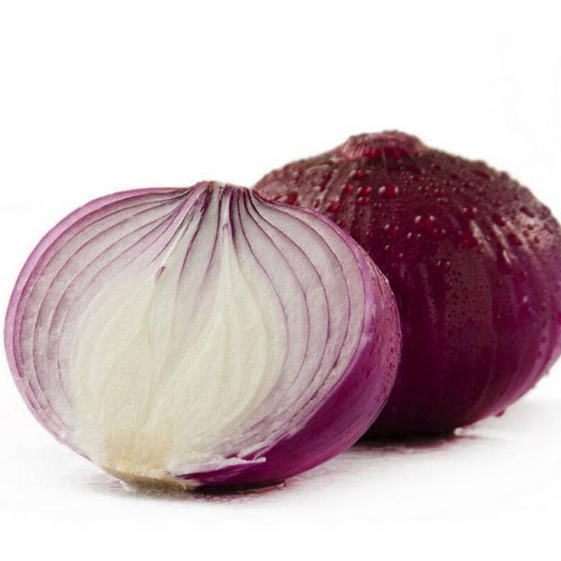 China exporters market prices per ton fresh red onion for onion buyers wholesale