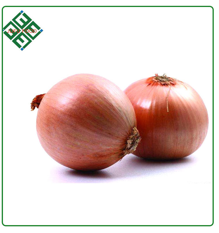 High Quality Big Round Red Onion For Sale