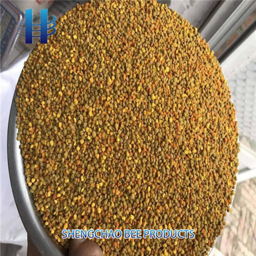 Hot-selling natural buckwheat bee pollen extract