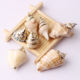 Summer Style Natural Starfish Conch Sea shell Pendant For Women