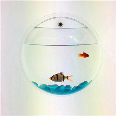 Design moderno feito sob encomenda acrílico pendurado na parede do aquário do tanque de peixes