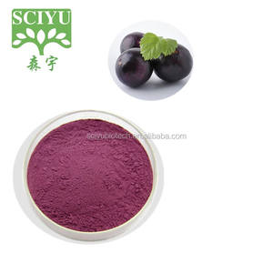 100% Natural Acai Berry Extract Powder 5:1 10:1 20:1