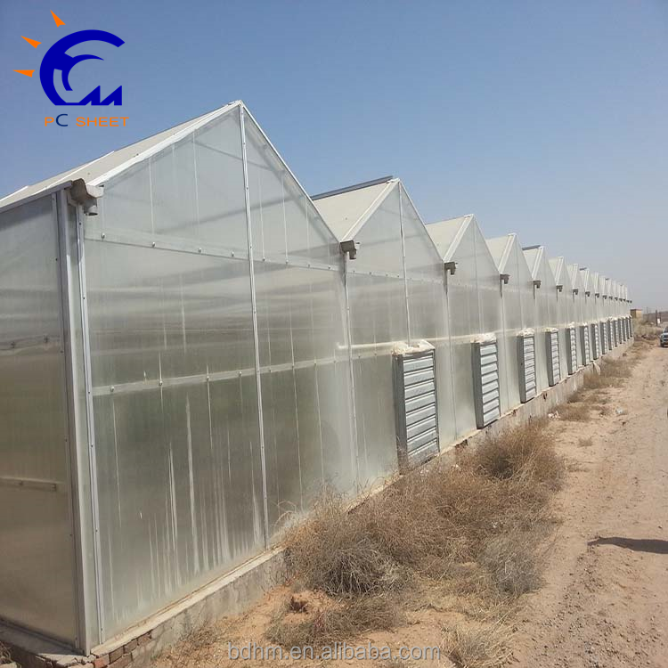 Multi-Span agricultural products Greenhouses,Production Greenhouse Type and Glass,Hot-DIP Galvanized Cover Material Bracket