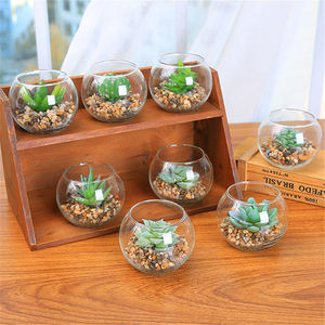 Green Artificial Cactus Succulent Plant glass jar pots