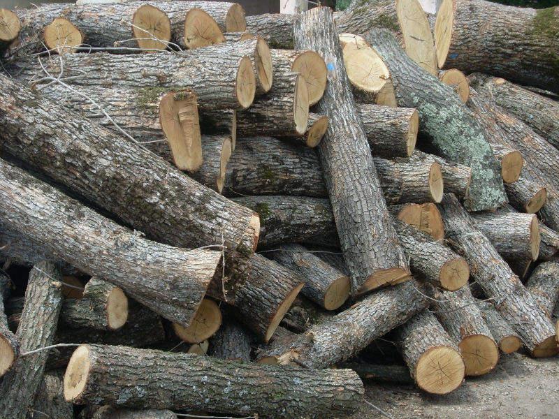 Firewood - 1m Oak logs