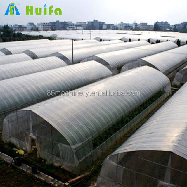 Vegetable growing green houses agriculture commercial