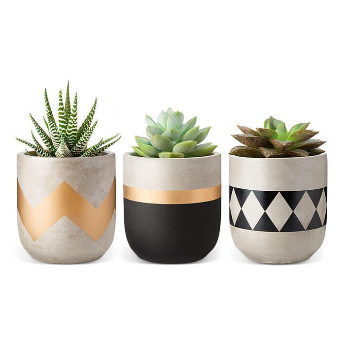 Modern Cement Succulent Planter Mini Indoor Flower Pot for Cactus Herbs