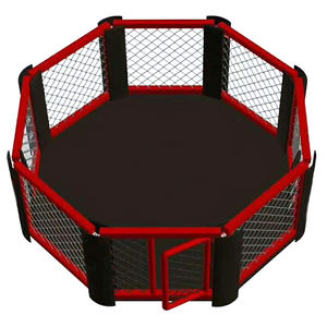 MMA international competition octagonal cage professional boxing ring