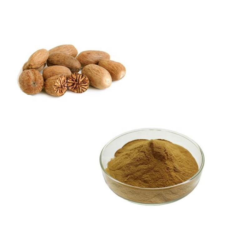 Organic Dried Spice and Flavour Nutmeg and Mace Extract Powder