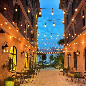 Decorative Outdoor Merry Christmas Waterproof Landscape Lighting Snow Falling Patio LED String Lights