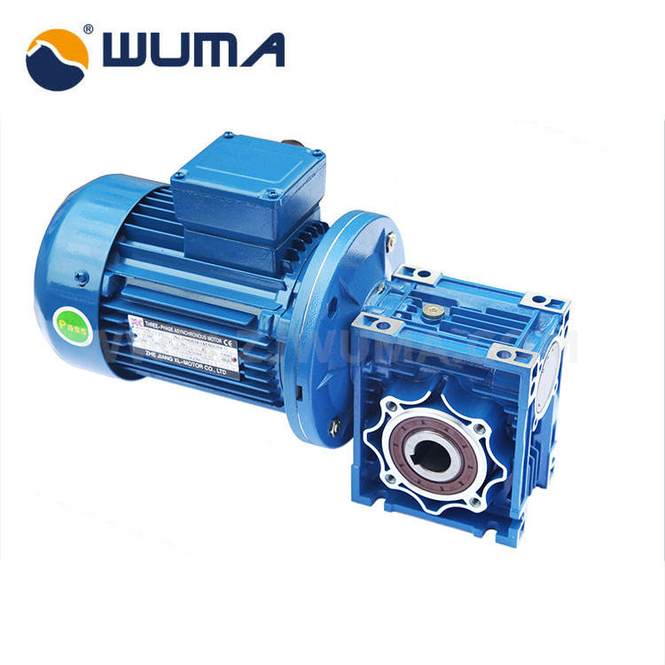 High Quality Double Worm Gear Speed Reducer With Electric Motor