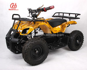 Electric Mini Quad ATV for kids