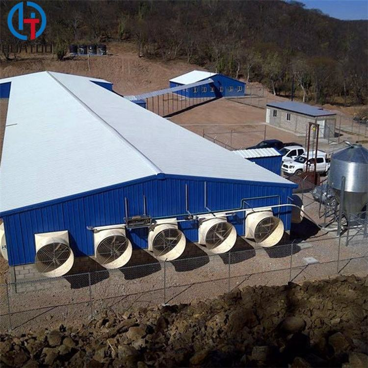 Hangars for Chickens Steel Frame Structure Design Poultry Prefab Chicken Cow Farm Building Sheds Poultry House