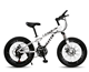 21 speed carbon steel frame disc brake 20 inches fat bike kids bike