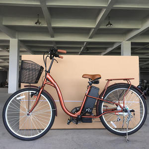 Mid Drive 2017 Electric Bike For Sale