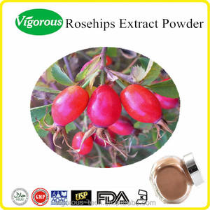 rosehip powder 10:1 rose hip extract