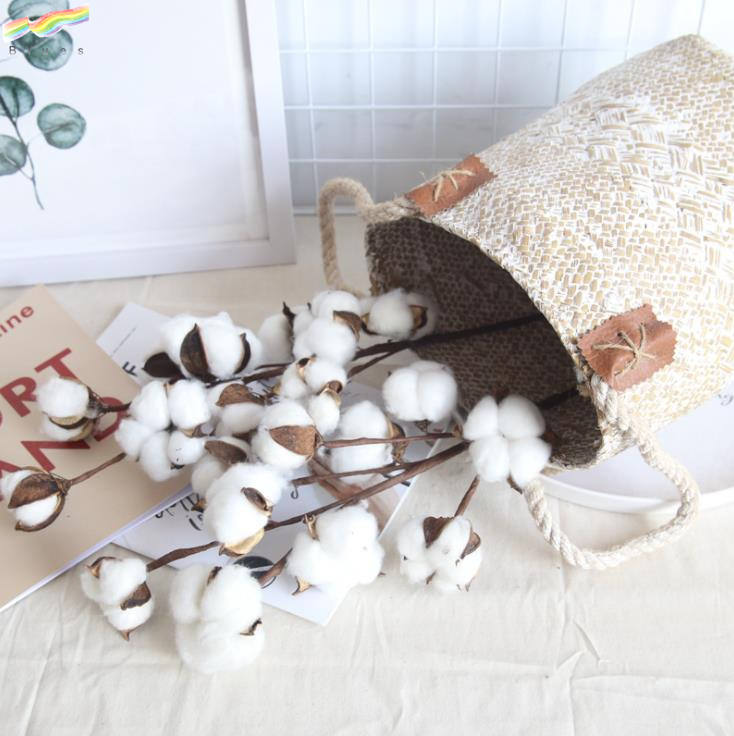 Really Natural White Cotton Stems Dried Flower Branch 10 Head for Farmhouse Style Decoration