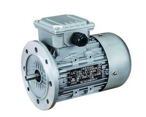 Y2 series electric motor
