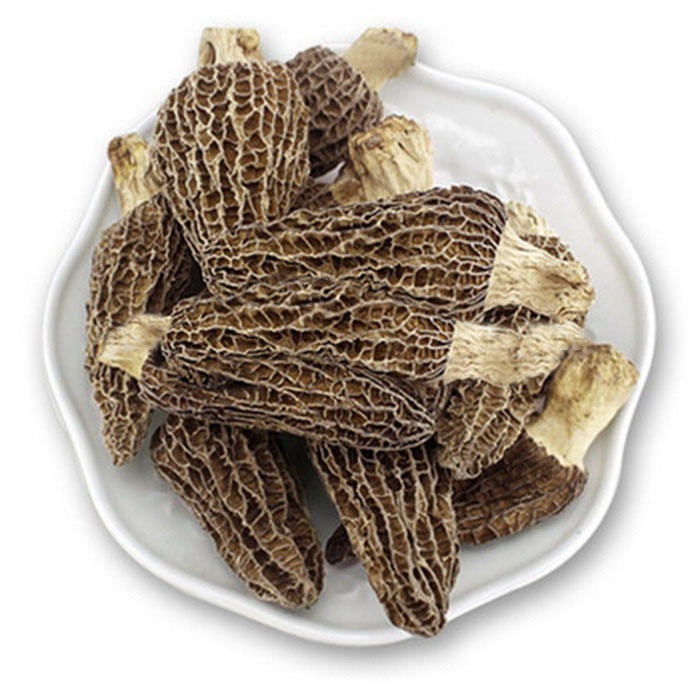 dried morel mushroom fresh type