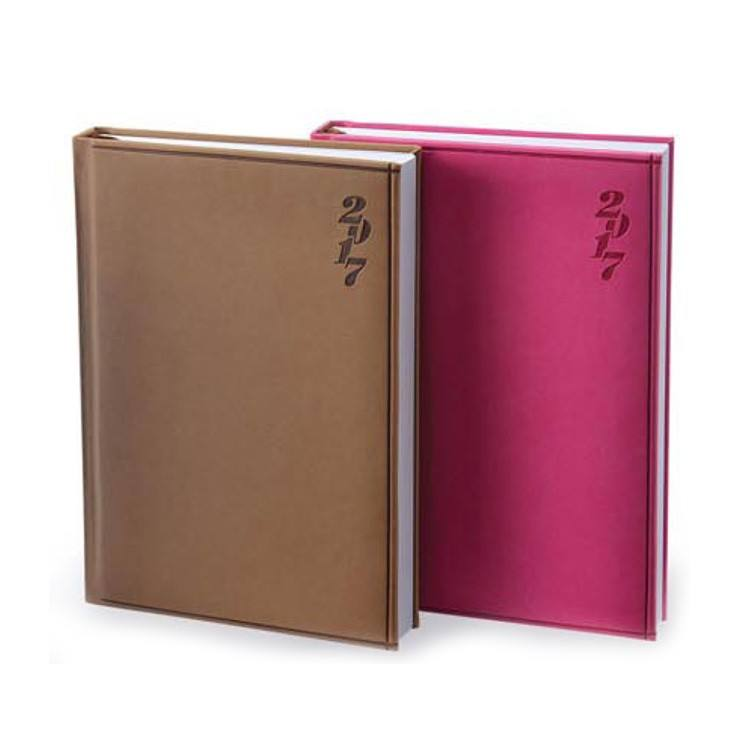 Style de mode Rose Couleur de Journal