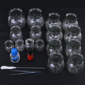 24pcs best selling CE/ISO Certificate Body Massage Function Glass cupping Fire cupping set