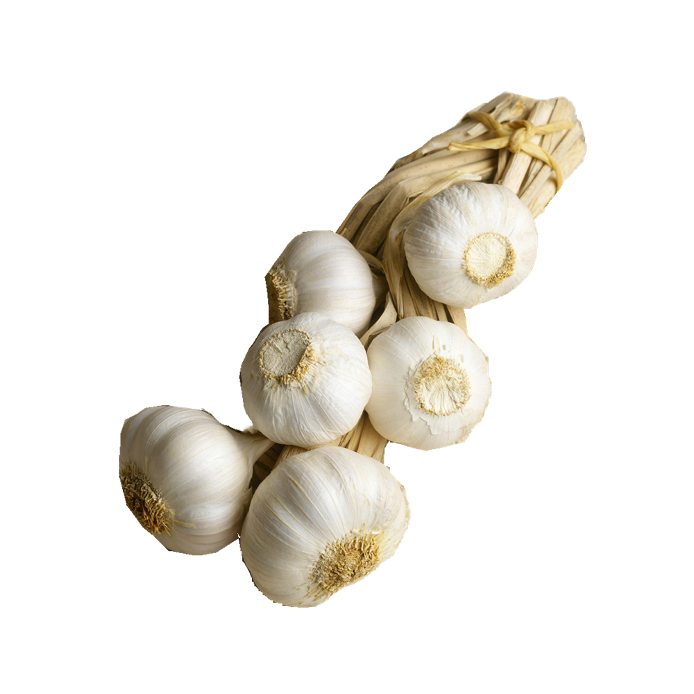 hot sale garlic price in China