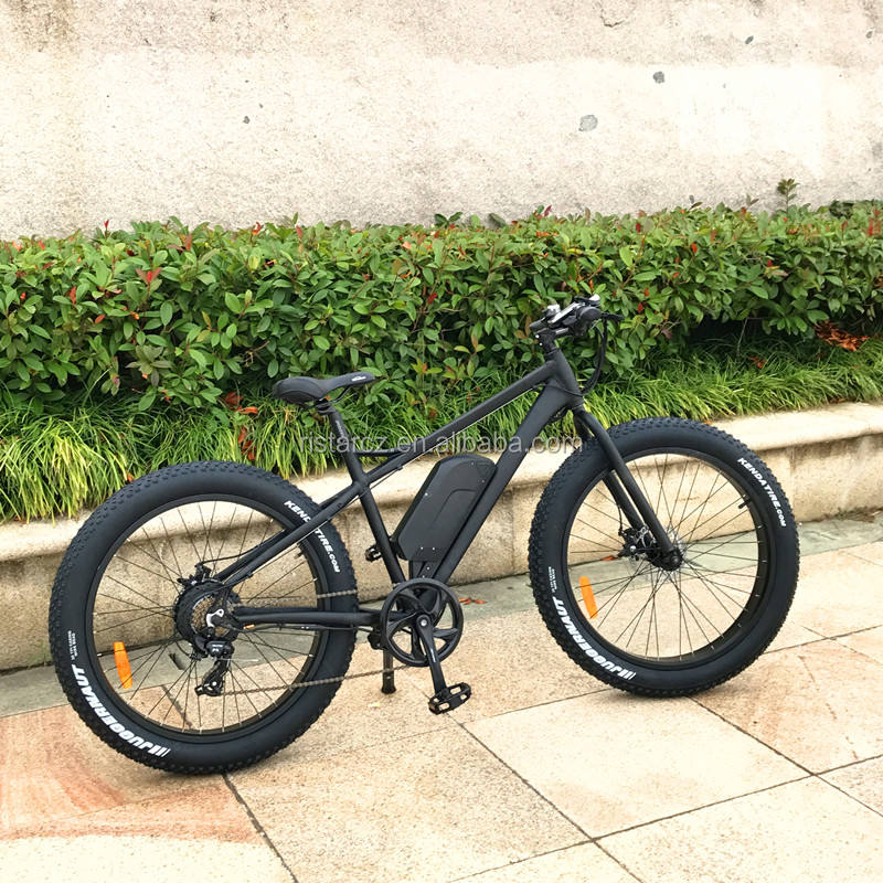 48V 500W fat tire ebike with thumb throttle for adults(RSD-508)