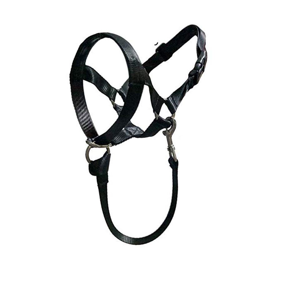 Durable Best Selling Dog Head Collar No Pull Training Tool for Dogs