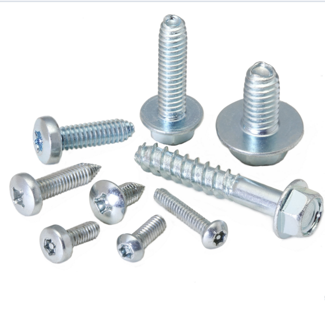 Stainless Steel Thread Forming Screw