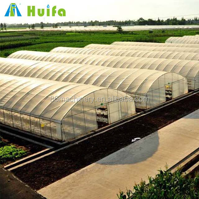 Commercial polytunnel greenhouse for sale