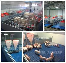 Galvanized pig farrowing crates pig equipment