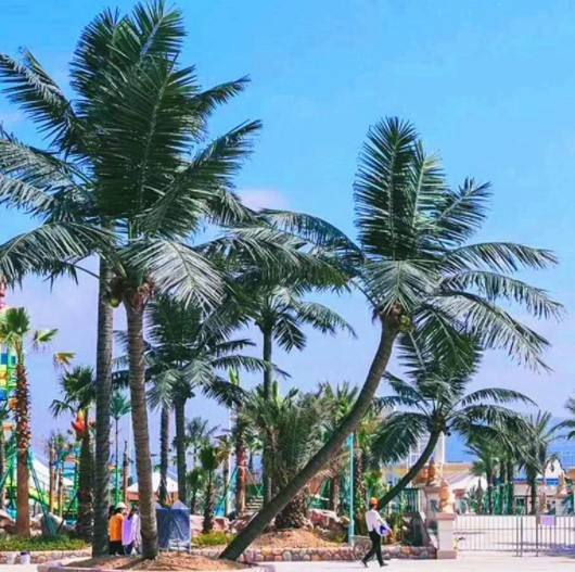 Artificial coconut palm tree fiberglass tree Mall beach outdoor trees