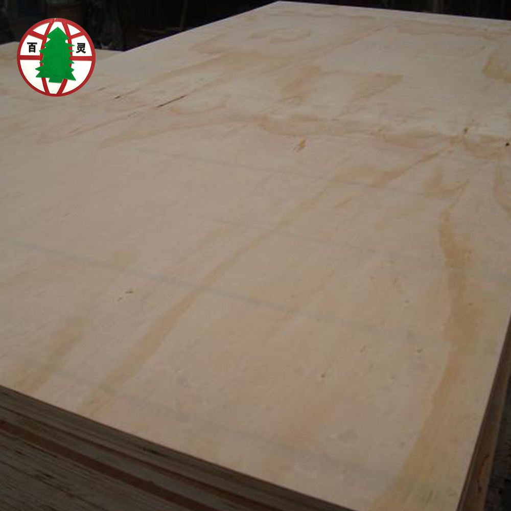Cheap Pine Wood Veneer Plywood Price from Shouguang Bailing Wood