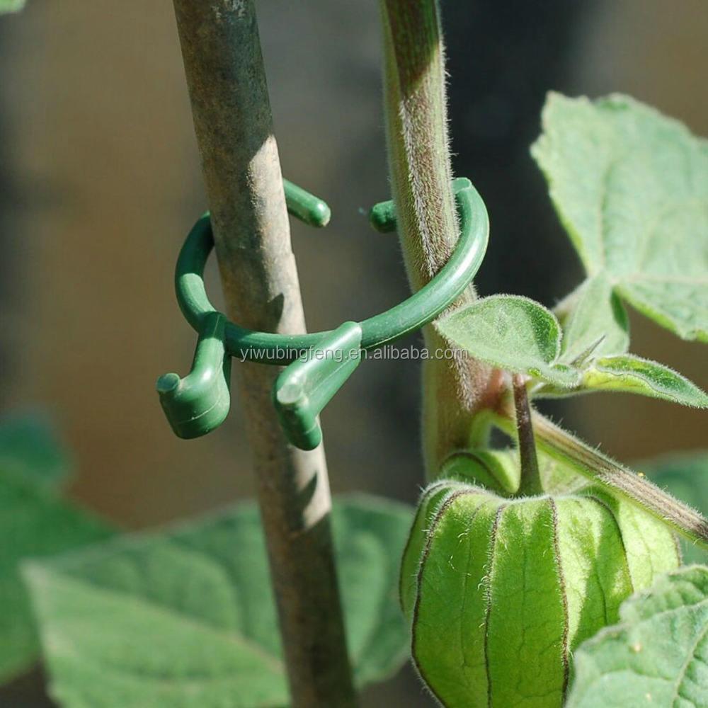 400 Stücke Pflanze Reben Tomaten Stem Clips Unterstützt Verbinden