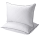 BK005 AAA Qualified Back Inserts Feather Custom Pillow Manufacturer from China